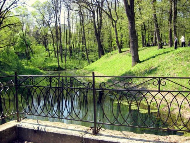 Курорт Трускавец - природа города