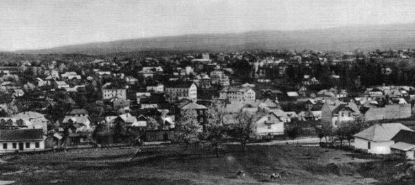 Панорама_Трускавця,_початок_ХХ_ст.